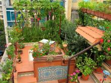 il giardino sul tetto di Gaetano Bruno