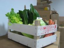 verdura biologica in una cassetta