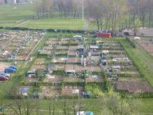 una fila di orti urbani a Milano