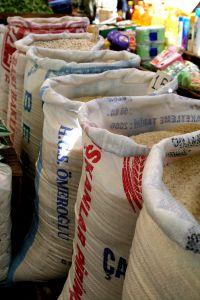 sacchi di riso