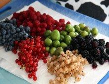 frutti di bosco assortiti