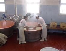 preparazione del parmigiano