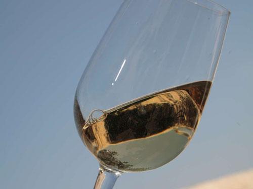 calice di vino bianco