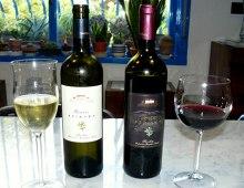 vini delle Tenute Piazza