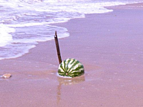 anguria sulla spiaggia