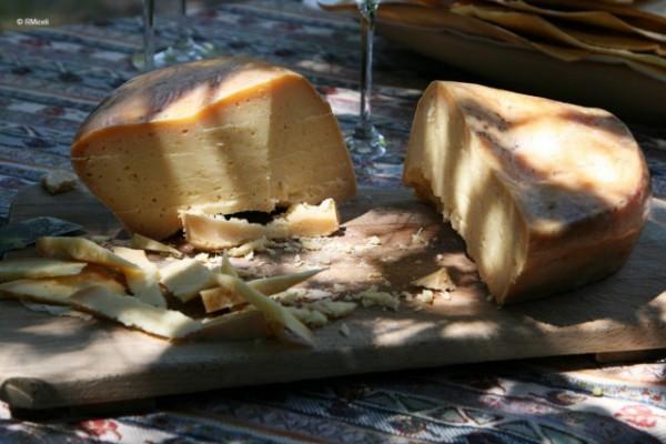 formaggi per degustazione