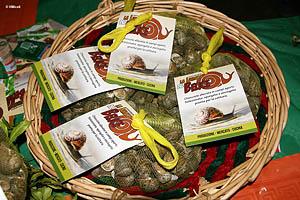 prodotti da degustare: i babaluci