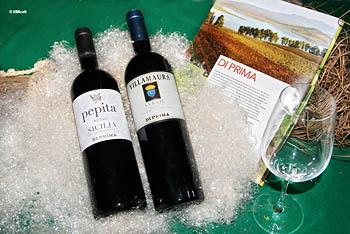 bottiglie di vino delle terre sicane