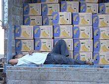 un contadino fa la siesta accanto alle casse di banane da spedire