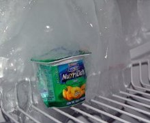 solo uno yogurt nel frigo vuoto...