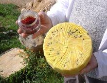 formaggio piacentino e zafferano