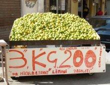 Limoni al mercato di palermo