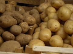 cassa di patate novelle