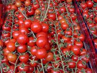 pomodorini ciliegini