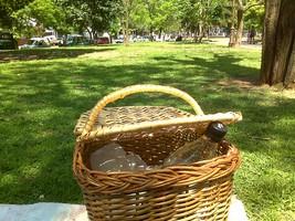 cesto da picnic di vimini sull'erba