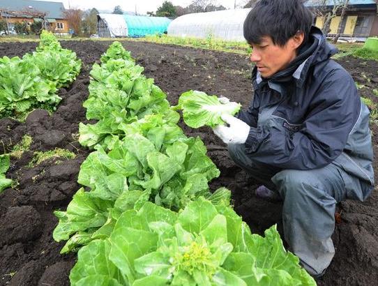 un ricercatore a fukushima