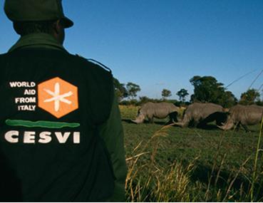 Mappatura dei rinoceronti in namibia