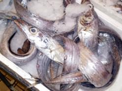 pesce spatola