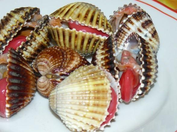 cuori di mare