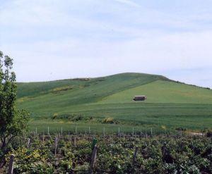 paesaggio collinare siciliano