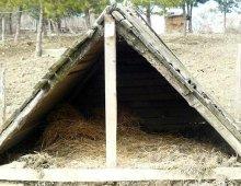 una capannetta creata per dare rifugio ai maiali