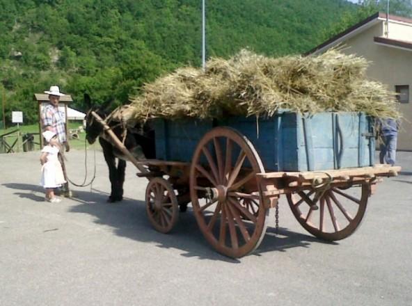 Un carro di fieno
