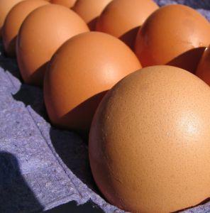 uova nel cartone