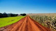 una strada arata in mezzo a un campo coltivato