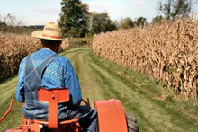 un trattore che attraversa un campo di grano