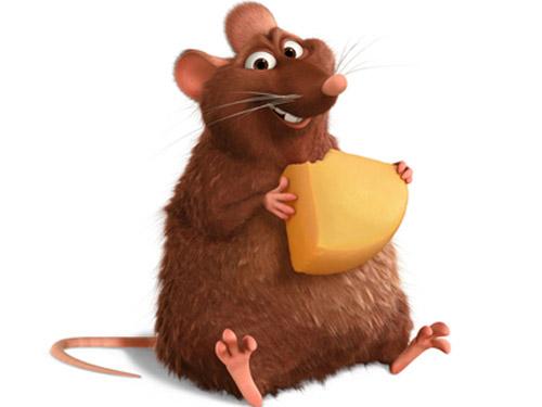 un topo del film ratatouille