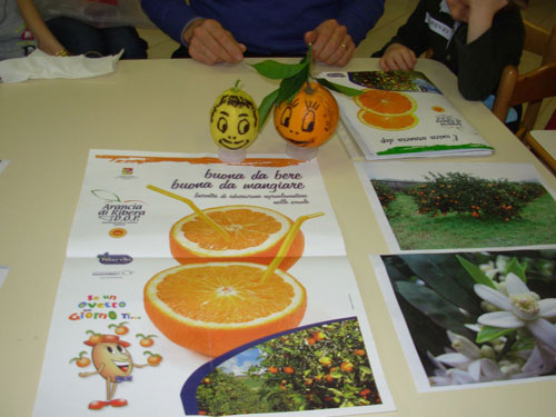 materiale informativo sull'arancia