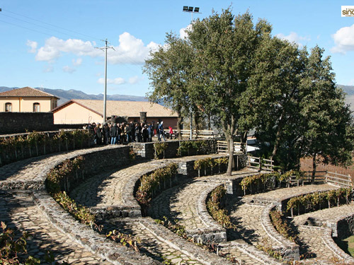 anfiteatro Palici