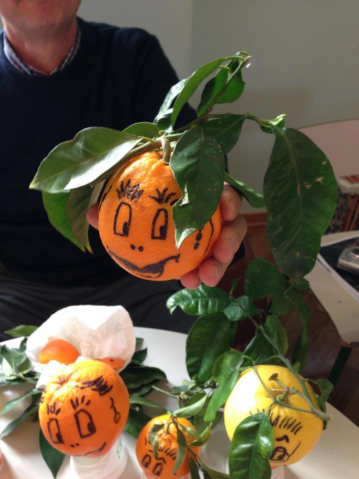 un'arancia di ribera disegnata per la lezione didattica