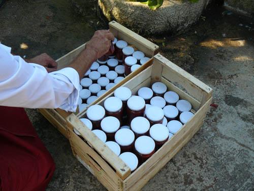 martino ripone i barattoli di conserva di pomodoro