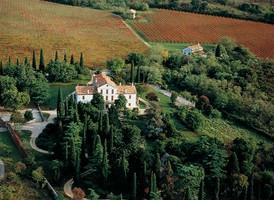 panoramica dell'azienda Castelvecchio