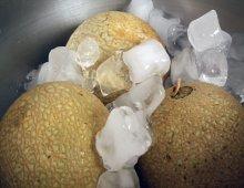 meloni in ghiaccio