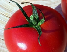 un pomodoro rosso