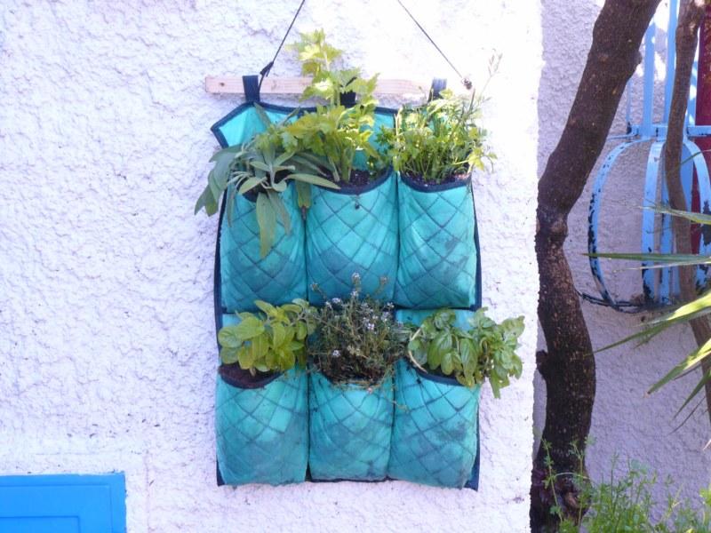 cestini per erbe