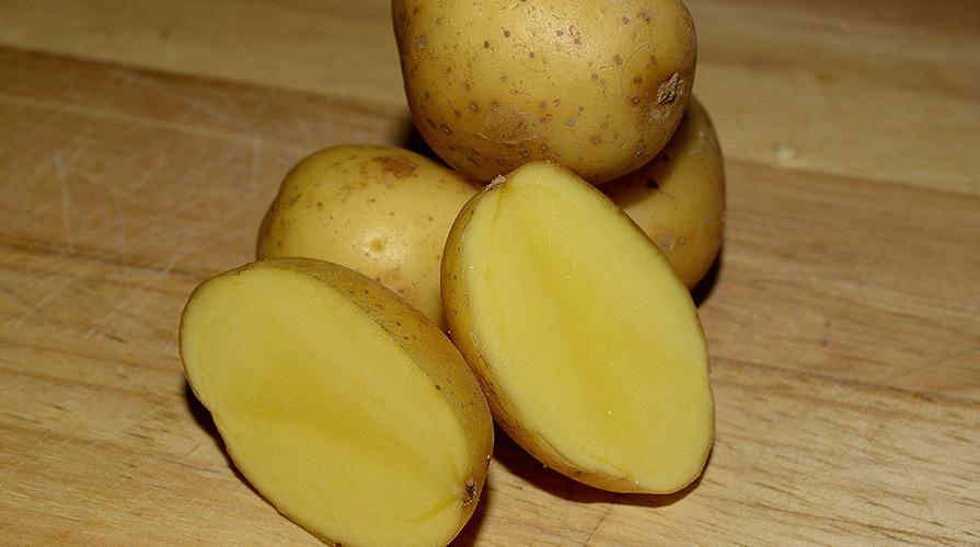 patata-novella