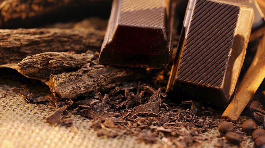 cioccolato-la-preistoria-del-cioccolato