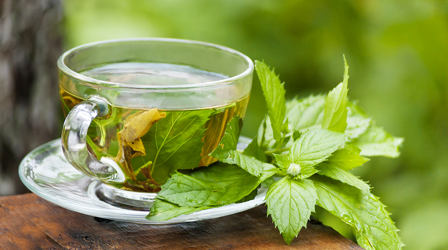 Risultati immagini per tè alla menta