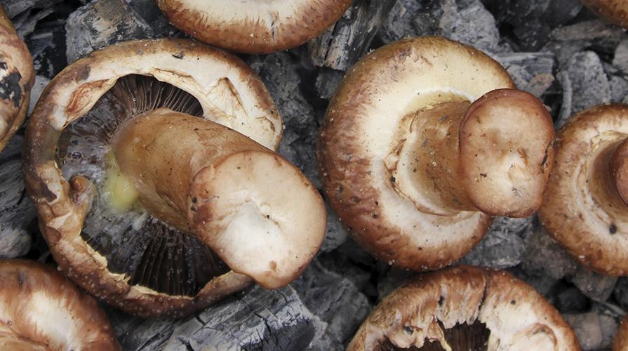 funghi ai ferri