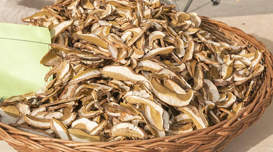 granelli-di-bovino-o-suino-con-funghi