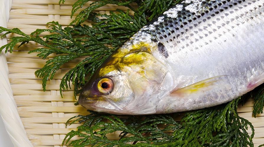 ricetta-pesci-in-carpione