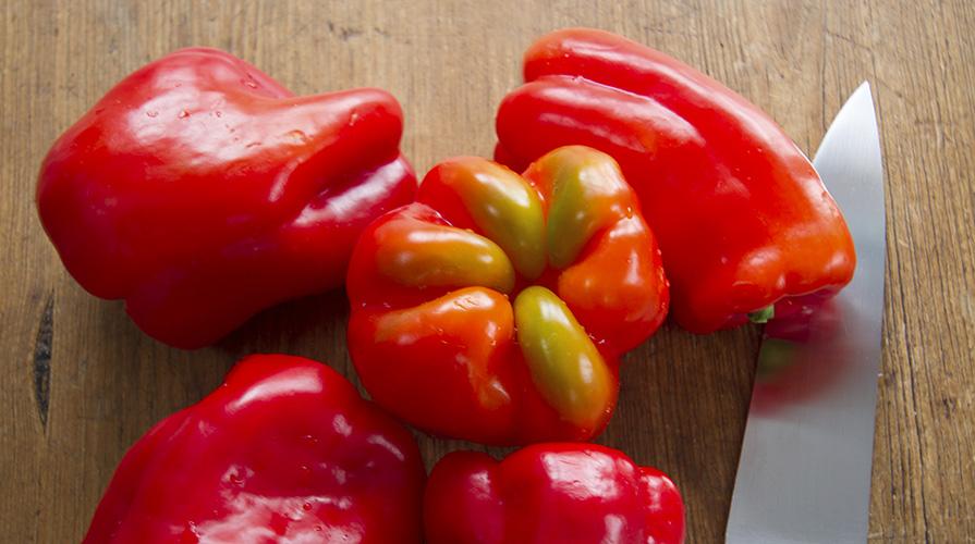 salsa-rossa