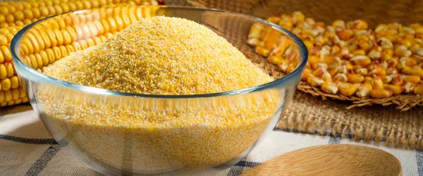rotolo-di-polenta-con-radicchio-fontina-e-speck