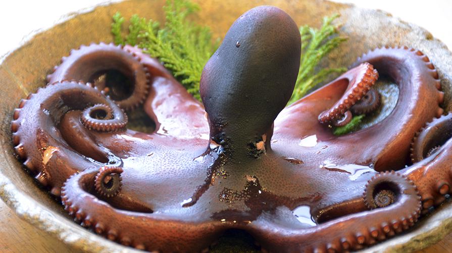 strudel-di-polpo-carciofi-e-olive