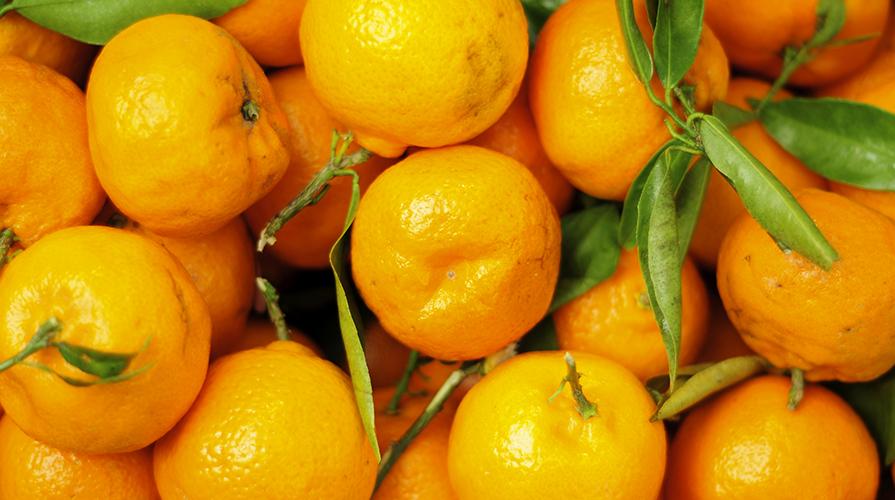 coppe-al-mandarino