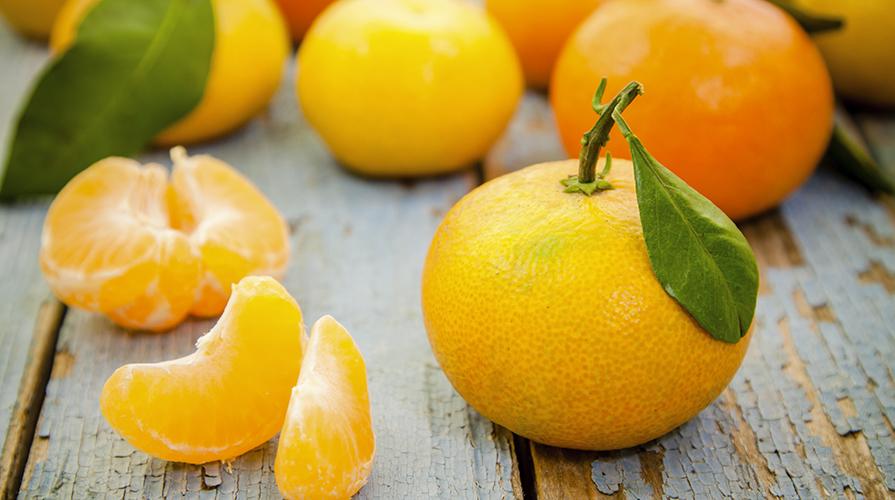 torta-fior-di-clementine