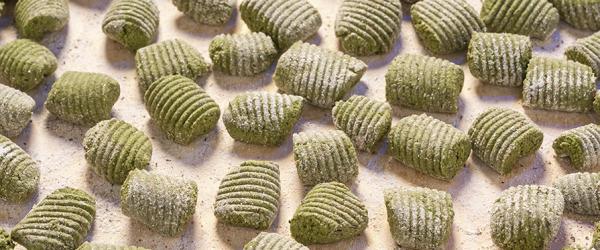 gnocchi-di-patate-al-basilico-con-ragu-bianco-di-funghi